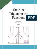 trig functions essay
