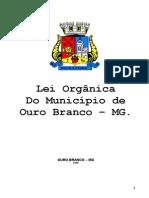 Lei Organica Municipio