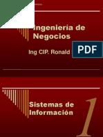 Ingenieria de Negocios - Sistemas de Informacion