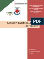 Gestion Estrategica de Proyectos 2013