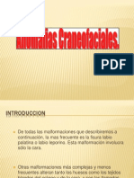 Clase 2 Anomalias Craneofaciales Undac Cepicisa 2012