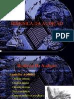 Biofisica_da_Audicao