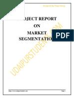 Market Segment at i on Project Report