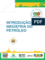 Introducao a Industria Do Petroleo