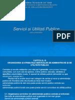 Capitolul 3- Servicii Si Utilitati Publice