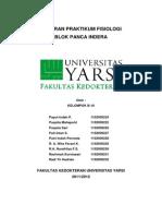 Laporan-Praktikum-Fisiologi pancaindera