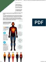 Estudo mapeia áreas do corpo 'ativadas' por sentimentos como raiva e felicidade - 11_02_2014 - Equilíbrio e Saúde - Folha de S.Paulo