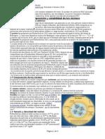 F6.3-FísicaNuclear-Teoría