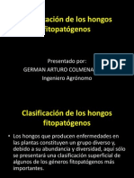 Clasificación de los hongos fitopatógenos