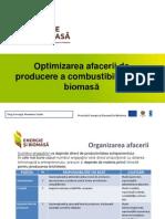 Optimizarea Afacerilor de Producere Biocombustibilului