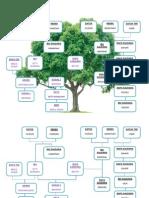 Family Tree Fpm