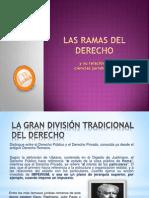 Diapos Ramas Del Derecho Expocision