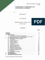 Análisis deposicional y geohistorico del NW Colombiano