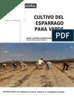 Cultivo de Esparrao ESPAÑA