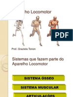Anatomia e Fisiologia Humana_Aula_04