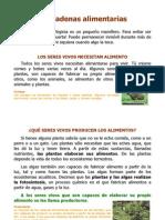las-cadenas-alimentarias-1-1196269386697481-4