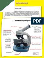Genoma Protocolo Microscopia Mar20111