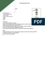 MINI LABORATORIO DE FÍSICA electrostatica
