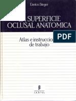 La Superficie Oclusal Anatomica
