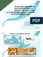 PresentaciónHp Novartis