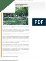 Servindi » Foro internacional analizará experiencias de manejo forestal comunita