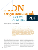 CL1_ADNorganizacional