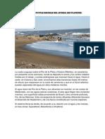 Actividad Biómas del Uruguay.docx
