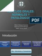 Seminario Reflejos orales.pptx