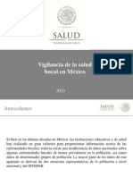 Perfil Epidemiologico 2013 OPS