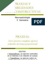 Praxias y Habilidades Visoconstructivas