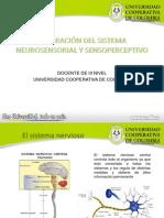 Valoración del sistema neurosensorial y sensoperceptivo