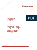 - Program Scope Management