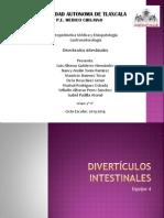 Divertículos intestinales eq 4