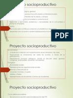 Proyecto socioproductivo