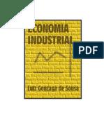 Gonzaga de Sousa Luiz - Economia Industrial
