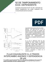 CAPACIDAD DE TAMPONAMIENTO INTRACELULAR INTRÍNSECO Y CO2 bioquimik