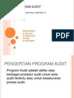 Program Audit