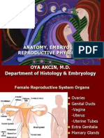 Anatomy Embryology Reproductive Physiology Son