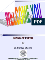 Sizing of Paper Presentation
