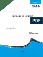 Microsoft Word - Publicitate Pe Internet - Lucrare Licenta