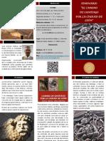 Tríptico seminario Camino de Santiago.pdf