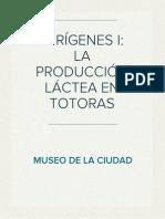 PRESENTACIÓN DE LA MUESTRA ORIGENES I