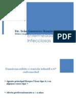 Enfermedades EXANTEMATICAS R1P