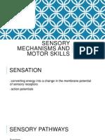 Sensory Mechanisms and Motor Skills