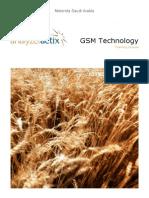 Analyzer Training GSMTech Motorola Copy