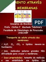 Movimento através das membranas