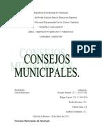 Concejos Municipales de Venezuela 1