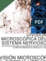 DivisionMicroscópicaSN
