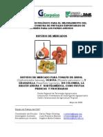 InformeFinaFontagro1