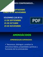 4) Aminoácidos